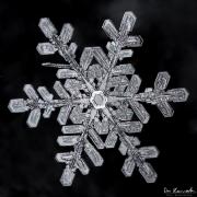 1d4-snowflake8