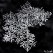 feb19-snowflake3-full