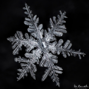 mar4-snowflake4