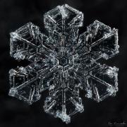 midnight-ice