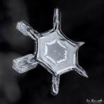 mar4-snowflake8