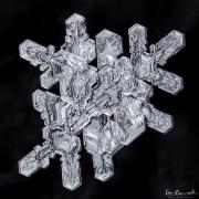 1d4-snowflake15