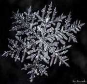 feb11-snowflake2