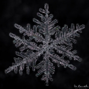 id4-snowflake10