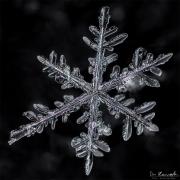 mar4-snowflake11