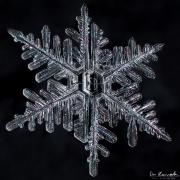 mar4-snowflake5